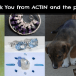 ACTIN Pounds for Puppies ~ Where Did the Money Go?