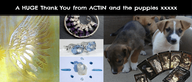 Holistic Charity Event ~ Online Auction
