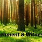 Detachment & Witnessing